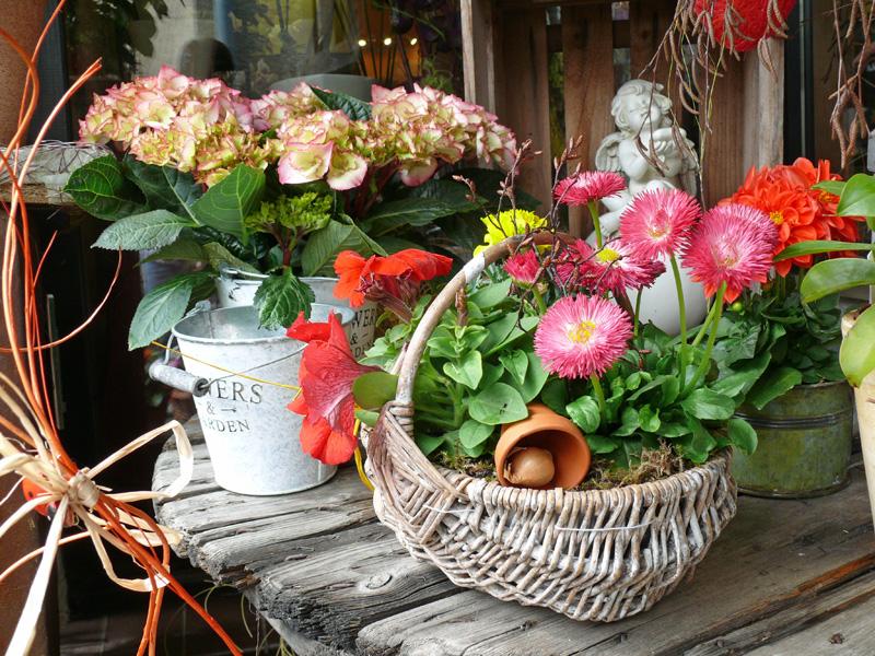 Blumenkörbe & geschmückte Pflanzen